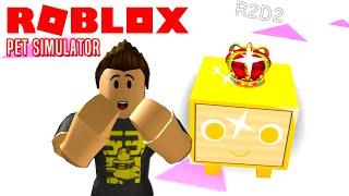 SJ-LDEN GOLDEN PET! - Roblox Pet Simulator Halloween Dansk Ep 6