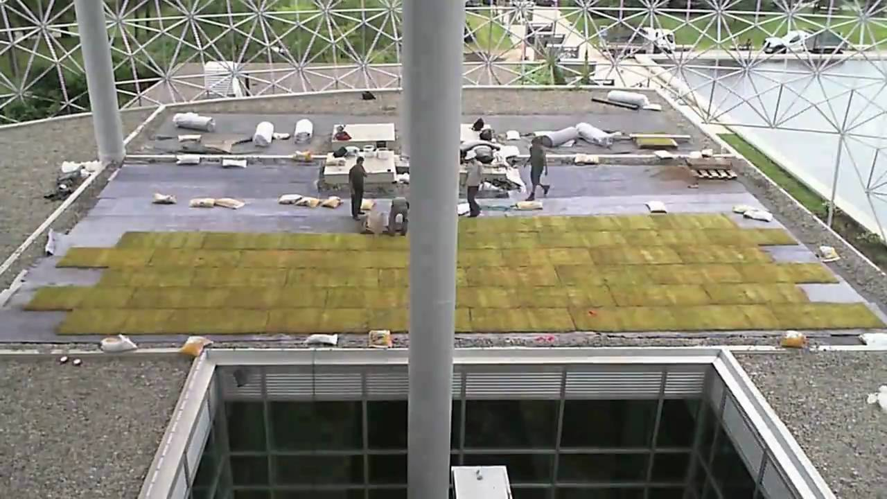 Extensive Green Roof Installation  Youtube. Cheap Dental Implants Nyc Eye Protection Sign. Brinks Home Security Las Vegas. Online Masters Degree Economics. Addiction Recovery Utah Nintendo Stock Prices. Best Hikes Olympic National Park. Successful Marketing Strategies. Best Deal For Internet And Cable Tv. Business Intelligence Platforms