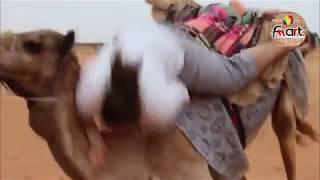 Supper Desert Fails | Funny Videos | Compilation
