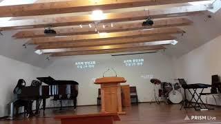 프라하한인교회 주일 2부 예배 2021/01/17