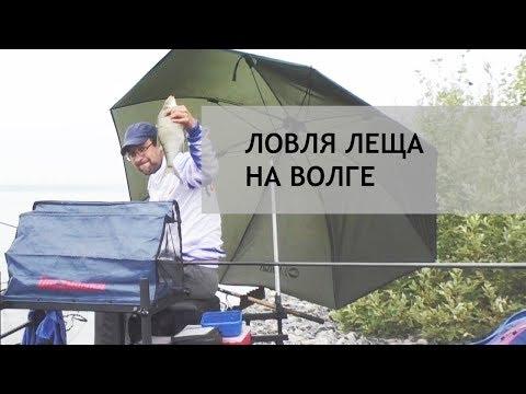 Ловля леща на фидер. Волга, август 2018 г.