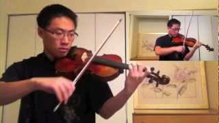 Legend of Zelda Medley (Lindsey Stirling Arrangement) - Tingrui Zhao
