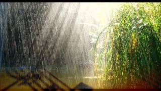 Deszcz w Wiedniu