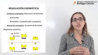 Biología Celular: Enzimas  (08/05/19)