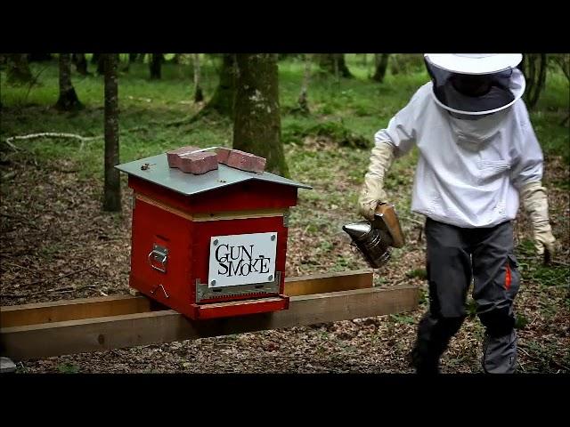 La ruche Gunsmoke