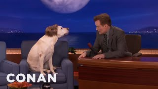 Ryan Gosling Impersonators Have Been Fooling Conan For Years  - CONAN on TBS thumbnail