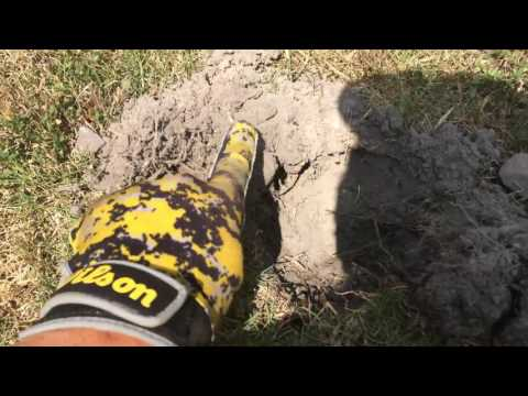 Thumbnail: Metal Detecting an old Park and House. Ring! Coins , & more!