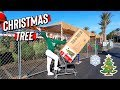 Getting Our Christmas Tree! Vlogmas Day 1