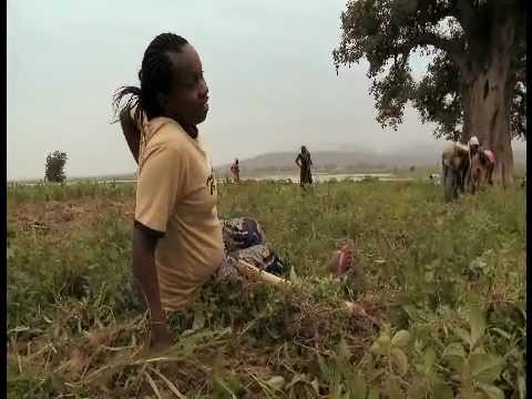 PrOpCom - Give Them Some Credit: Agricultural Loans for Nigeria's Women