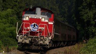 DD51牽引 JR山口線 DLやまぐち号 (2021.7.23-24)