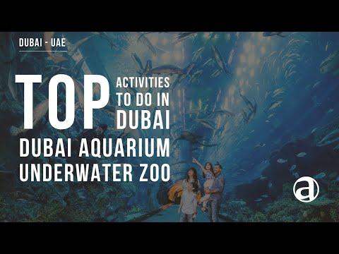 Dubai Aquarium & Underwater Zoo | The Dubai Mall | Dubai Top Attractions | Concierge antropoti