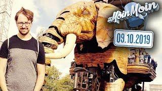Ich reite einen Elefanten in Frankreich   MoinMoin mit Andreas