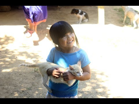 Remote Veterinary Adventure (visiting an indigenous community): Chuffed Adventures S02E12