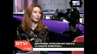 Директор Фонда защиты городских животных Екатерины Дмитриевой телеканалу RTVI