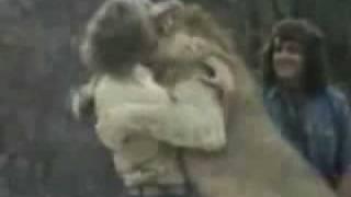 LEÃO vs HOMEM - Homem enfrenta Leão com papel higiênico