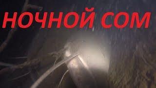 Нашел Большого СОМА ночью Подводная охота на сома и судака 2020