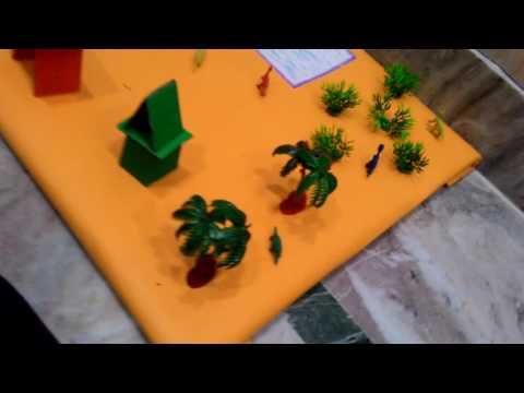 Urban and rural area model mayank Bajaj school model