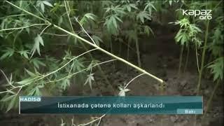 """YouTube Kanalımız: https://www.youtube.com/KepezTV ➤ """"ARB Kəpəz""""-in..."""