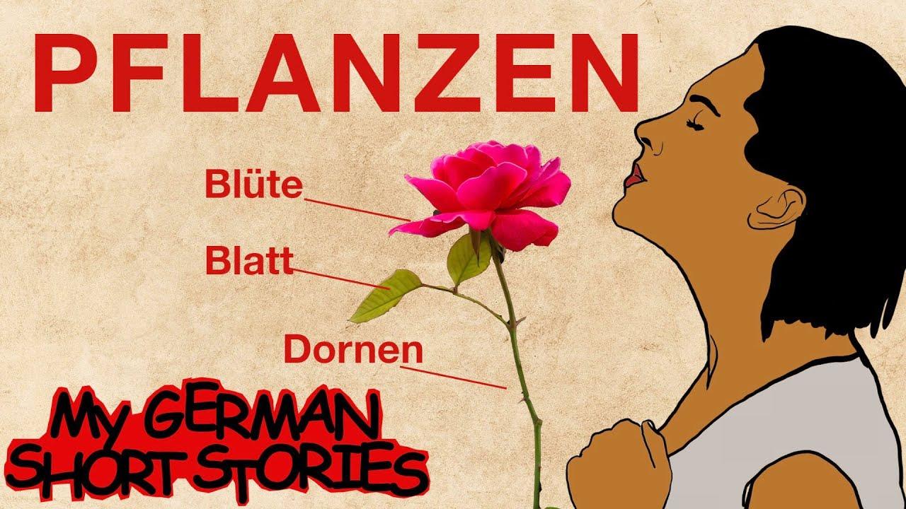 DIE KRAFT DER PFLANZEN   MY GERMAN SHORT STORIES   DEUTSCH LERNEN MIT GESCHICHTEN