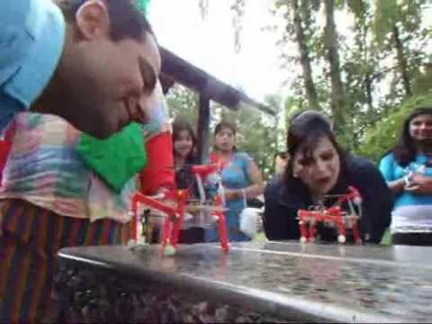 Parents say kids really loved Vancouver party savers at family picnics