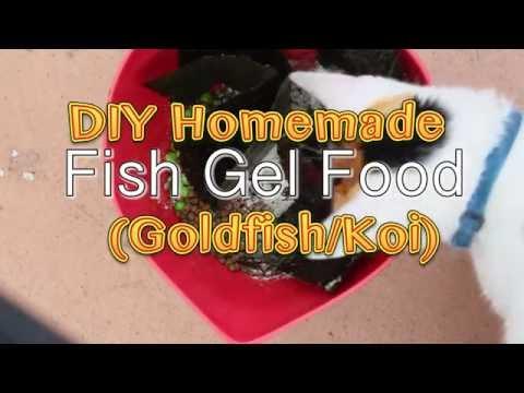 DIY Homemade Fish Gel Food (Goldfish/ Koi)
