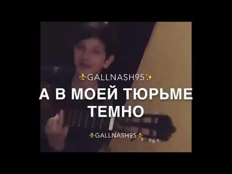 Чеченец злой породы