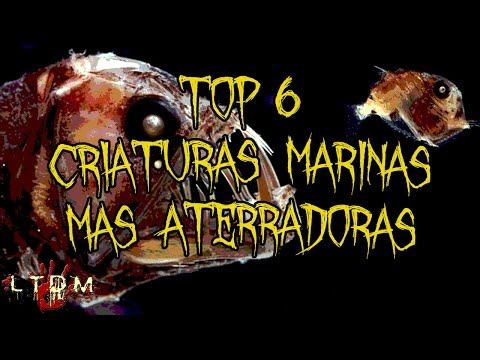 Top 6 criaturas marinas mas aterradoras-LTDM