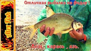 Рыбалка на фидер ! Ловля ЛЕЩА , КАРАСЯ и ЯЗЯ. Волга , Куйбышевское водохранилище.
