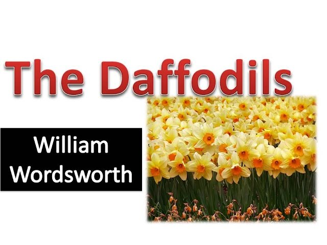 The Daffodils By William Wordsworth Hindi Explanation Youtube