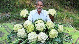 Cauliflower Masala Curry | Cauliflower Curry | Gobi Masala Curry By Grandpa Kitchen