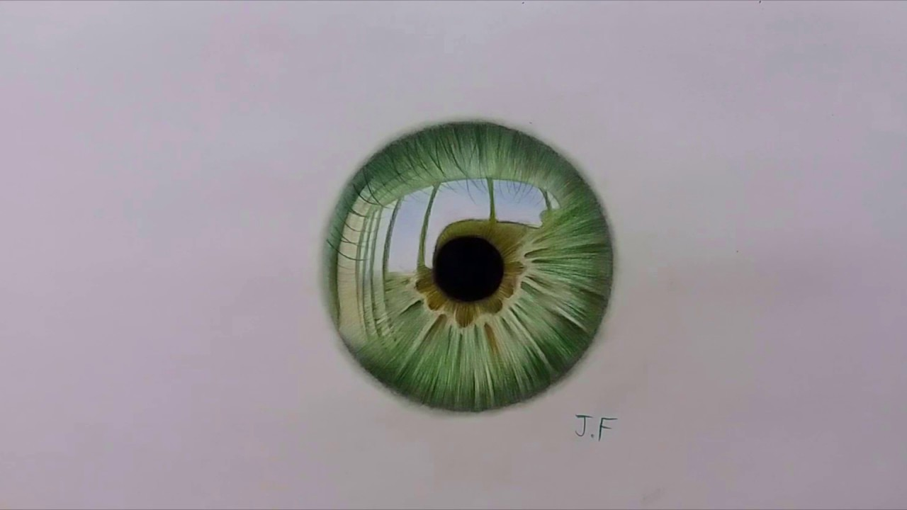 Speed Drawing Green Iris Color Pencils On Paper Youtube