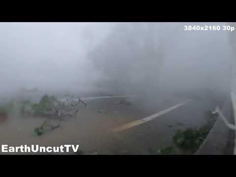 Cat 4 Raw Storm Cam 2: Powerful Eyewall Wind And Rain - 1 HOUR 4K Footage Typhoon Lingling