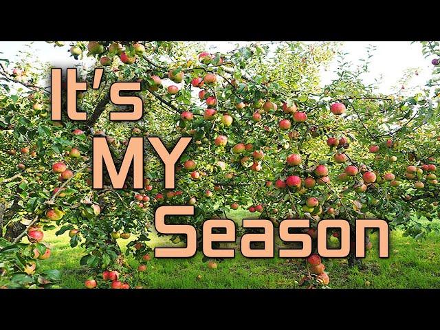 """It's My Season …"" Part 2"