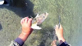 Рыбалка на Или 2021 Как вязать камыш Показываю Жарим рыбу