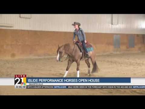 Islide Performance Horses Sharpsville
