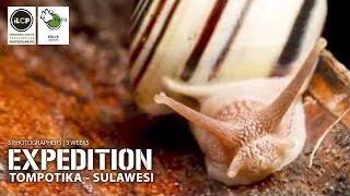 Expedition Tompotika - Sulawesi