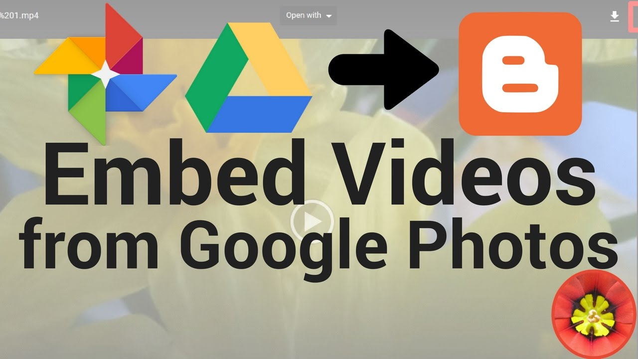 Embed videos from Google Photos or Drive on your blog or website