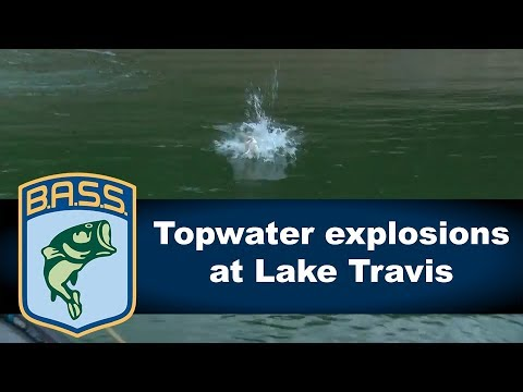 Best of topwater strikes on Lake Travis