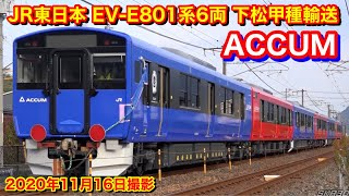 【JR貨物 EF210-157号機+JR東日本EV-E801系6B 甲種輸送 8862レ 2020.11.16】