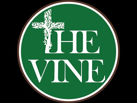"The Vine:  Relationships in a ""One-Story Universe"""