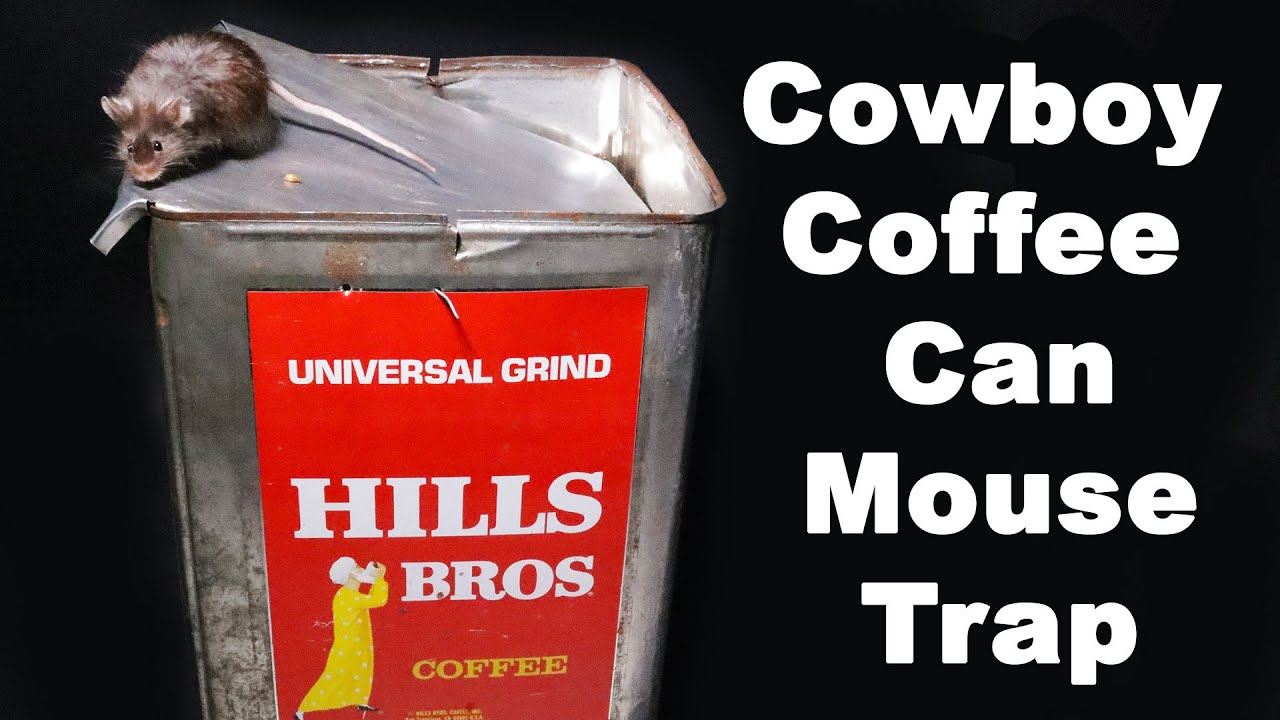 The Cowboy Coffee Can Mouse Trap - Rounds Up the Mice. Mousetrap Monday - download from YouTube for free