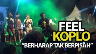 FEEL KOPLO BERHARAP TAK BERPISAH LIVE