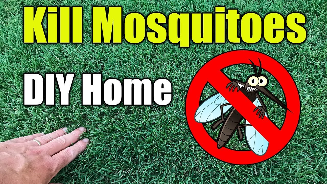 Etonnant Mosquito Control Home And Yard Spraying