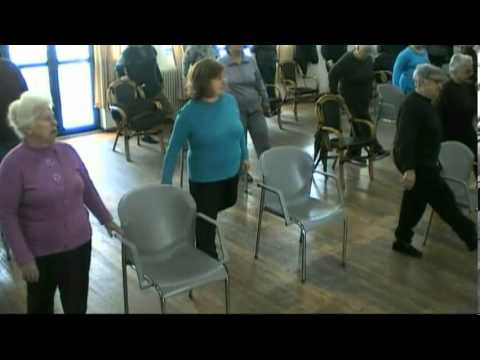 Seniors' Falls Prevention Exercise Program