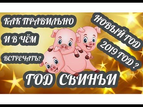 Как и в чём правильно встречать Новый год 2019? Новый год Жёлтой Свиньи по восточному календарю - Видео приколы ржачные до слез