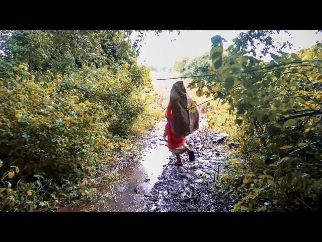 सांगलीत बिबट्याचा धुमाकूळ : गावामध्ये दहशत/भीतीचे सावट !