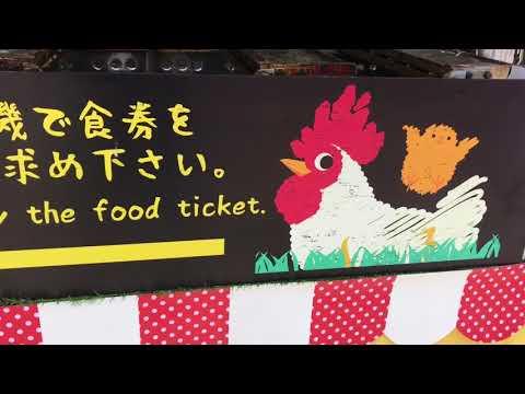 Holiday tennoji zoo,osaka japan 2018#vlog