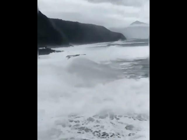 Tenerife, impressionante onda anomala travolge un palazzo fronte mare