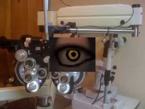 Optometrist in Miami For Your Eyes Only in South Florida