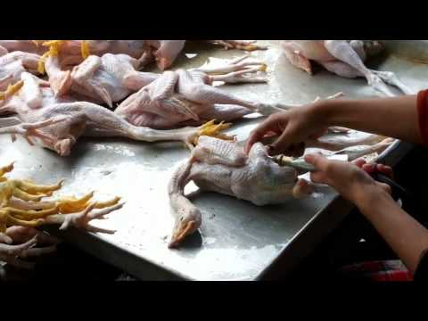 Chicken Pumped with Water